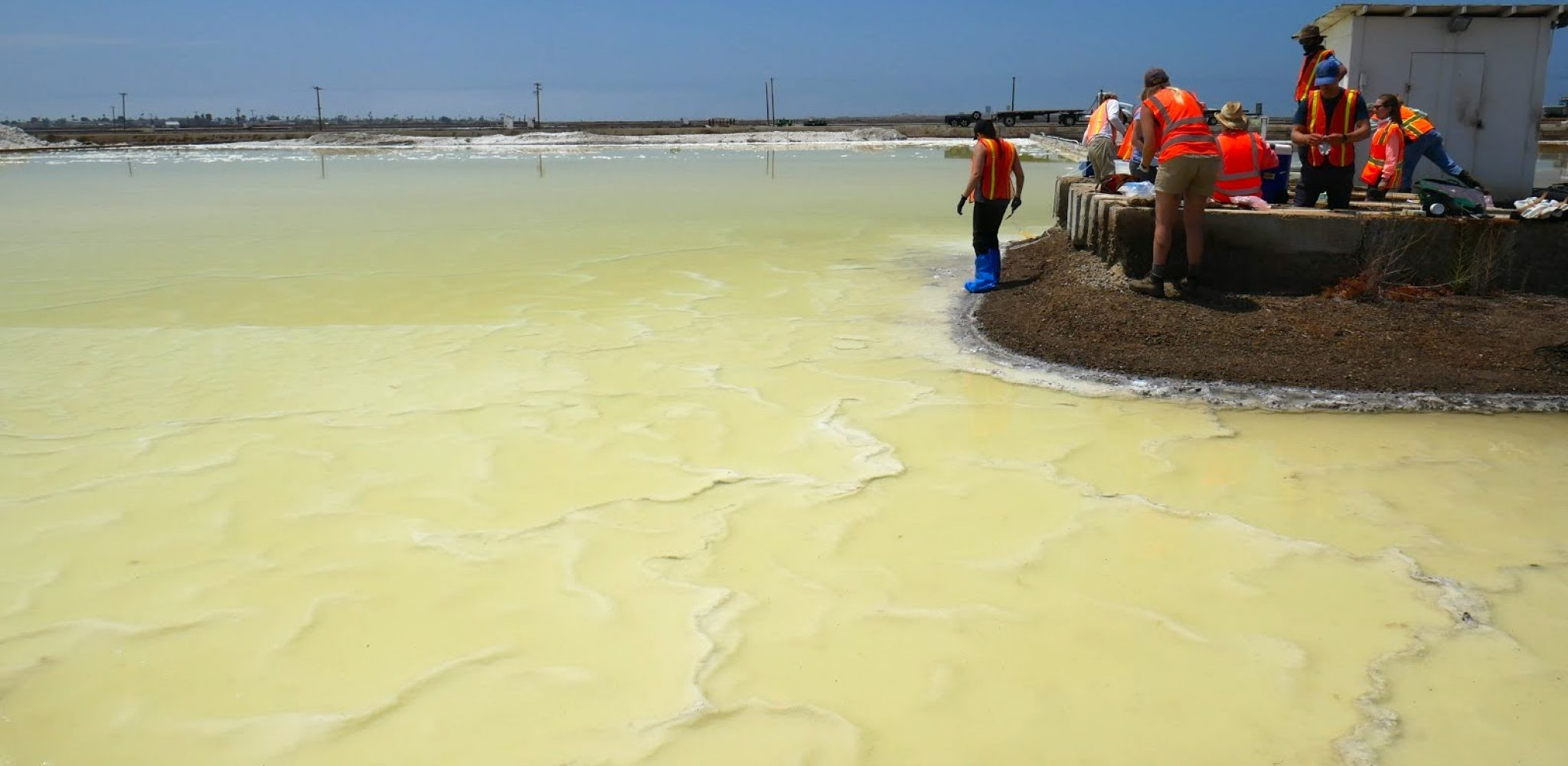 Photo of a yellow-green lake of magnesium chloride, with a small dirt landmass on the right with several people standing on it, wearing orange vests and taking samples.